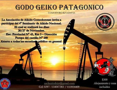 2016-11-26 | Godo Geiko | Patagonico