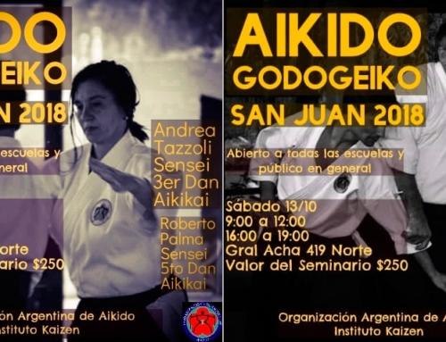 2018-10-13 | AIKIDO GODOGEIKO – SanJuan
