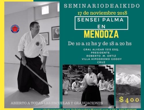 2018-11-17 | AIKIDO SEMINARIO – Sensei Palma en Mondoza