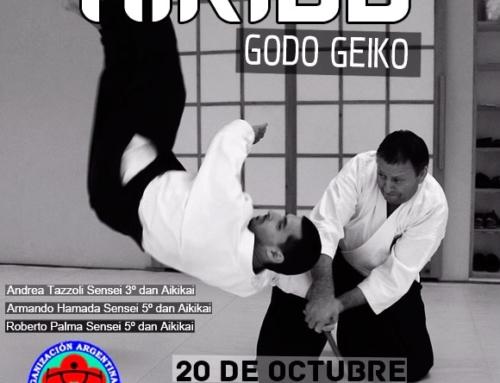 2018-10-20 | AIKIDO GODO GEIKO – Formosa 2018