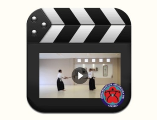 Video Técnico – Kumidachi